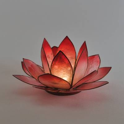 Lotosblüte Lotuslicht Nr. 4 rot Kraft - 1