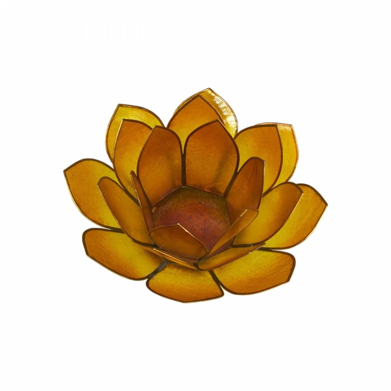 Lotosblüte, filigraner Teelichthalter, Windlichthalter goldgelb, transparente Capiz-Muschel - 2